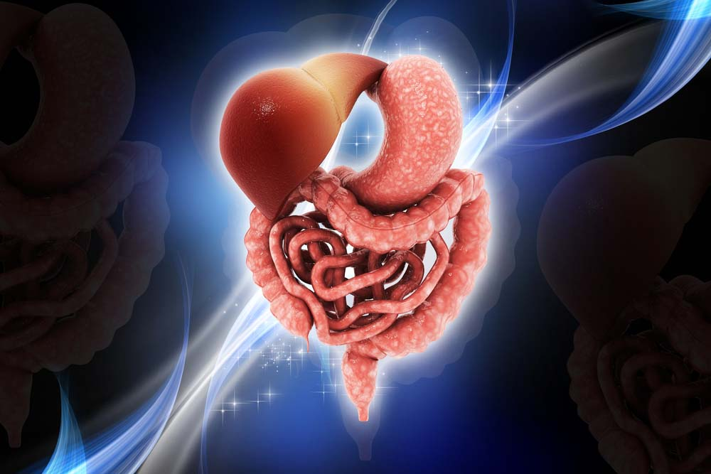 Do you have healthy poop? Leaky gut? It's not too late to find out! Yet!